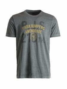 T-shirt barney